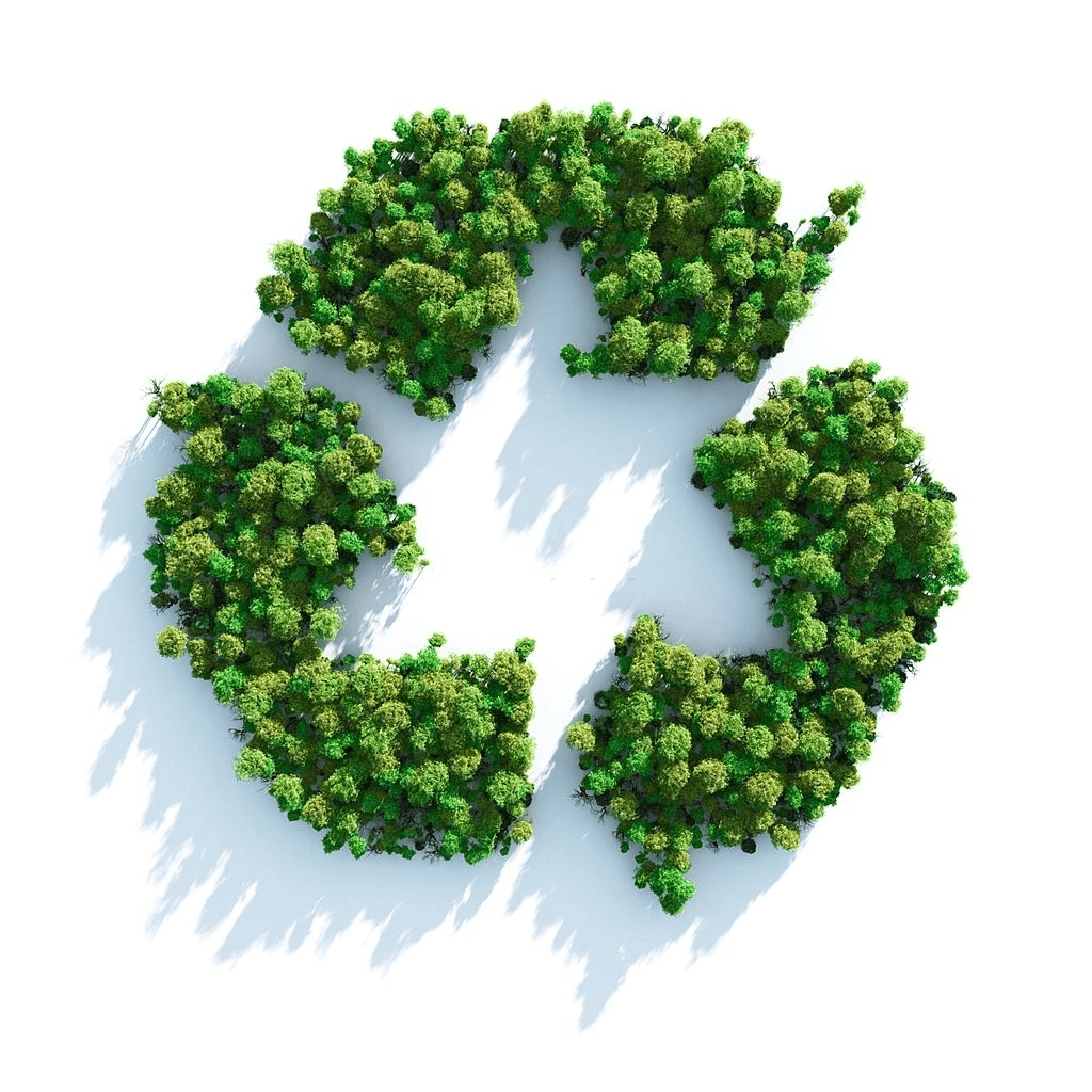 Recyclable and Green Cleaning