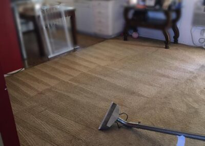 Residential Carpet Cleaning Services San Diego